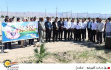 برگزاری آیین روز درختکاری در منطقه ویژه اقتصادی لامرد